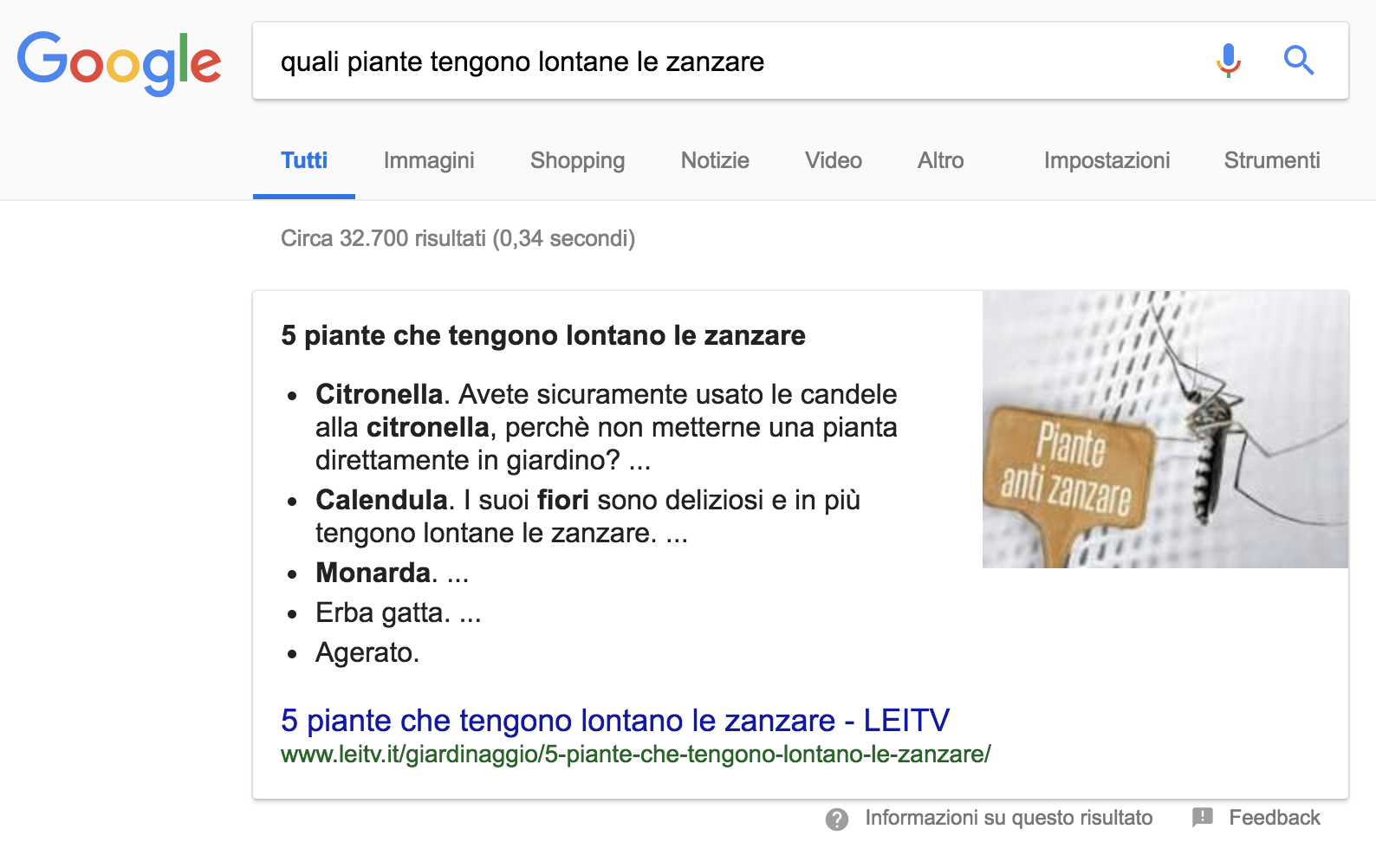 Esempio di Featured Snippet con elenco puntato